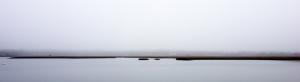 Accabonac Mist